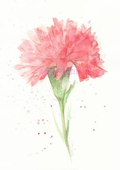 A watercolour carnation tattoo I've always wanted to get, to never forget what my mother has done.